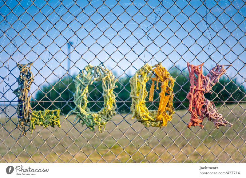 KOOL Farbe Sommer Wärme Stil Linie Kunst Park elegant Kreativität Schönes Wetter Lebensfreude Coolness Wolkenloser Himmel trendy Wort Typographie