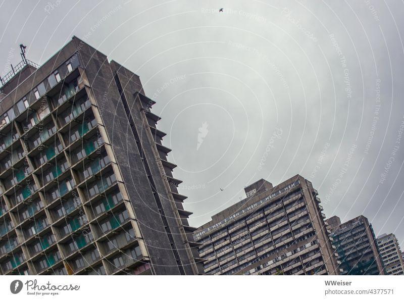 Diese Plattenbauten waren ein Vorzeige-Siedlungsprojekt der DDR, jetzt sind es verlassene Ruinen Hochhäuser Hochhaus Haus Neustadt wohnen bauen neues Wohnen