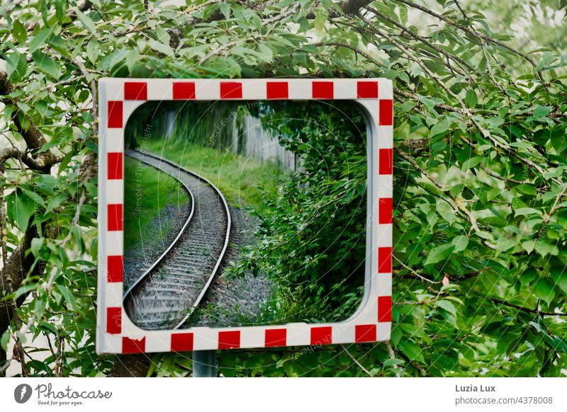 Schienen im Spiegel, darum herum viel Grün Bahn Eisenbahn S-Bahn Gleise Laub grün rot weiß Schienenverkehr Gleisbett Bahnfahren Verkehrswege reisen verreisen
