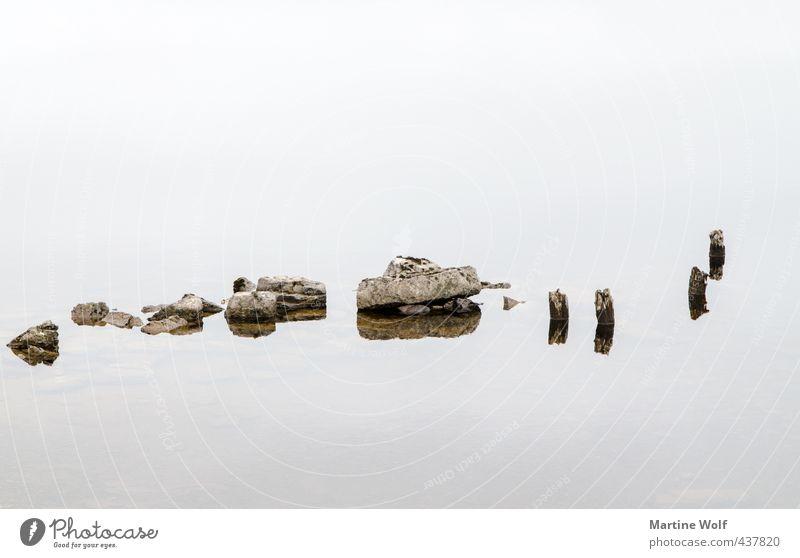 von Stöckchen und Steinchen Natur See Holz ruhig Gelassenheit Großbritannien Schottland Stock Reflexion & Spiegelung Wasser Schwarzweißfoto Außenaufnahme