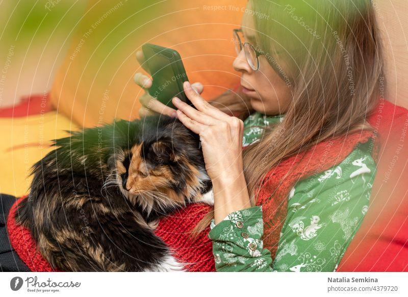 Junges Mädchen sitzt zu Hause auf der Couch mit einer Katze, die auf ihr liegt, und mit einem Smartphone in den Händen. junges Mädchen Sitzen abschließen