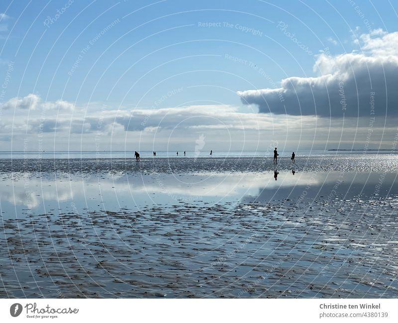 Silhouetten klein, Wolken spiegeln sich im Watt, schön und endlos weit Wattenmeer Wattwanderung Menschen Wattboden Meeresboden Wasser Nordsee Himmel Abendsonne