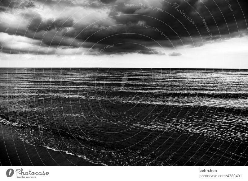 eindringlich dramatisch Usedom Schwarzweißfoto Freiheit weite Fernweh Sehnsucht Idylle Wasser Wellen Natur Wolken Himmel Ostsee Meer Strand Landschaft Küste