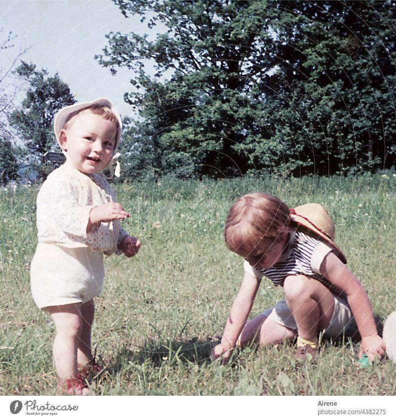 Blümchen pflücken Kinder Retro 60er Kleinkind Baby Wiese Lachen Freude Natur Liebe zur Natur Altes Foto analog Sommer unbeschwert Kindheit Glück Fröhlichkeit