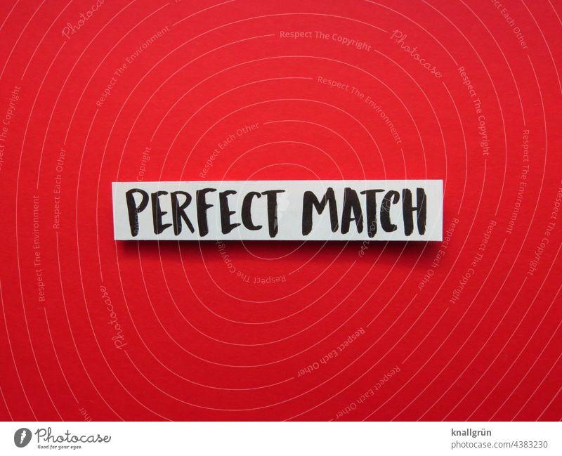 Perfect match zusammenpassen Paar Übereinstimmen Dating 2 zusammengehörig Partnerschaft Liebe Zusammensein Zuneigung Liebespaar harmonisch Erwartung Buchstaben