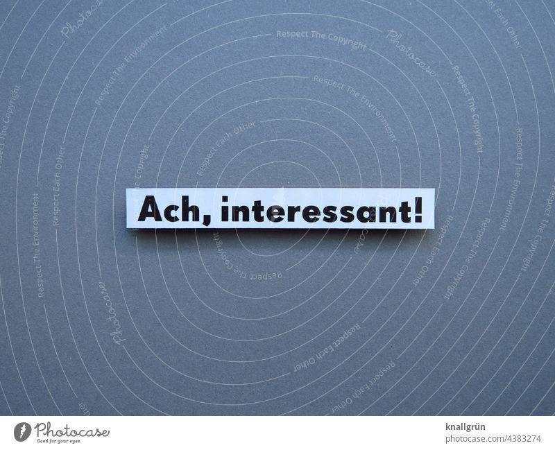 Ach, interessant! Interesse Neugier Aufmerksamkeit Gefühle Erwartung Schriftzeichen Schilder & Markierungen Farbfoto Kommunizieren Hintergrund neutral