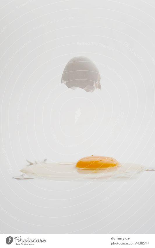 eggtest Lebensmittel Ernährung Bioprodukte Zerstörung Ei Eierschale kaputt aufgeschlagen Aufschlag Spiegelei roh Eigelb Protein Klarheit deutlich hell Schweben