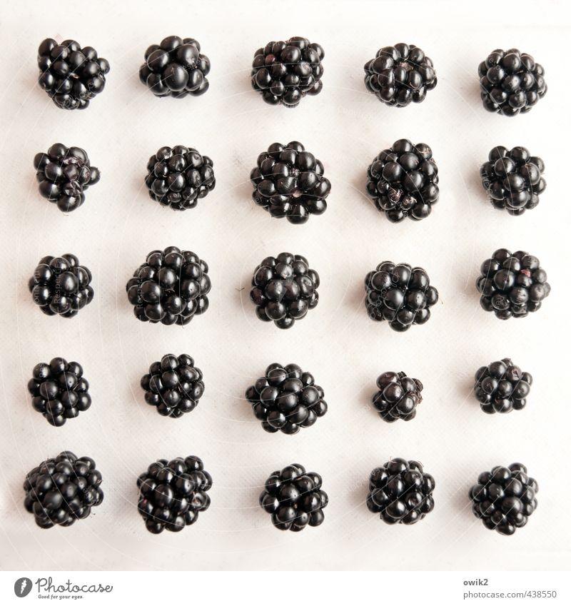 Obstsalat Natur weiß Gesunde Ernährung schwarz natürlich Gesundheit klein Zusammensein Design liegen Zufriedenheit frisch Ordnung mehrere authentisch ästhetisch