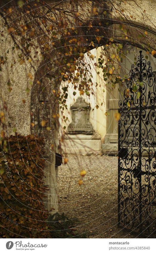 Die Türe steht offen | Eingang zum Innenhof einer Kirche Herbst historisch alt Schmiedeeisen Herbststimmung Durchgang spannend Torbogen erkunden