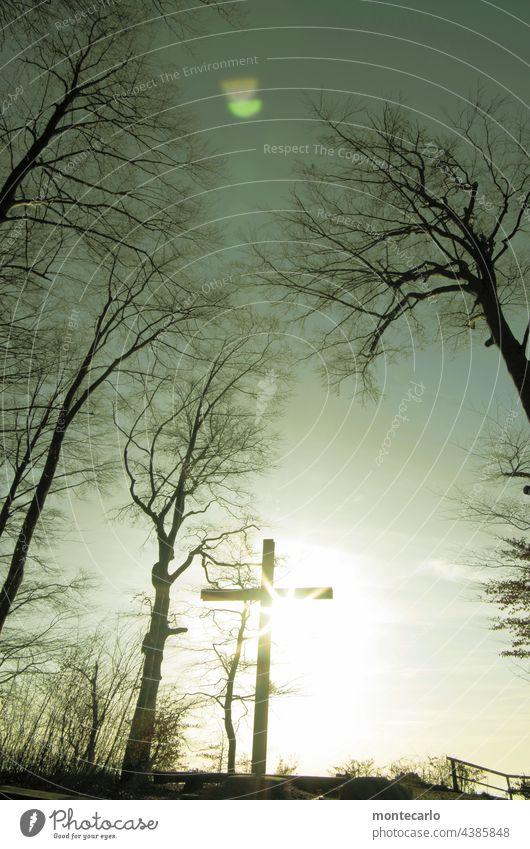 Andachtsplatz im Friedwald Heiligenberg Religion & Glaube Trauer Tod Vergänglichkeit Kraft Stimmung Holz Holzkreuz Wald Sonnenlicht Himmel Natur Umwelt Herbst