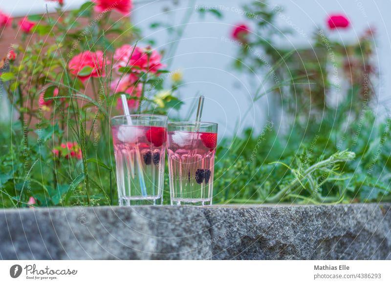 GIN Cocktails mit frischen Früchten Lebensmittel Frucht Limonade Glas Sommer rosa Gin gekühlt Schorle Saft Vitamin Farbe Zitrone erfrischend Party Gesundheit