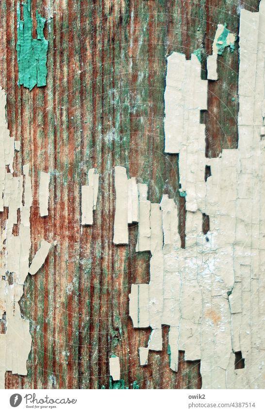Abspaltung Farbe Holz Zahn der Zeit verfallen Spuren Farbrest abblättern Vergänglichkeit abstrakt Detailaufnahme Riss Nahaufnahme Gedeckte Farben Armut Desaster