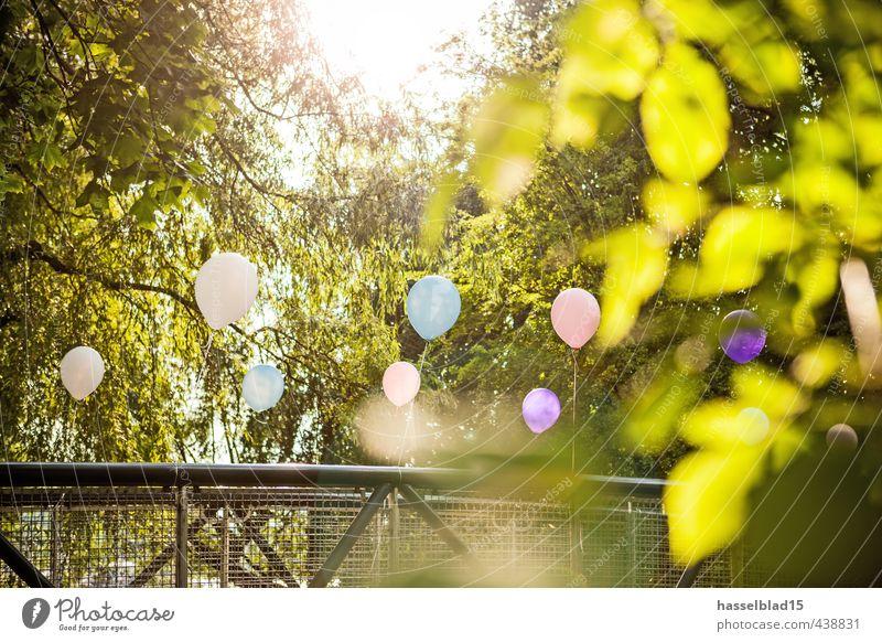 balloon party Erholung Blatt ruhig Freude Leben Liebe Stil Glück lachen Lifestyle Feste & Feiern Party Zufriedenheit Geburtstag Fröhlichkeit Tanzen