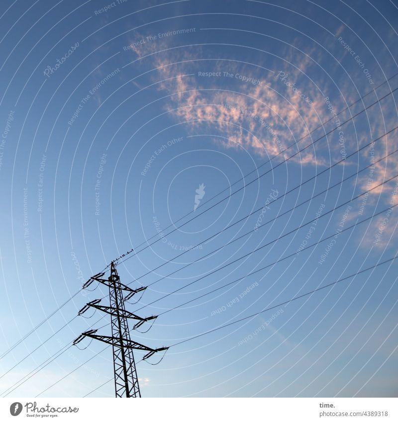 Lebenslinien #146 strommast Überlandleitung himmel wolken abend abendlicht ernergiewirtschaft Energieversorgung parallel lebenslinien kabel vögel sitzen pause