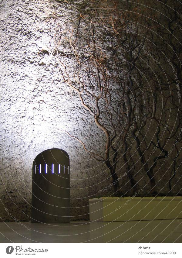 Licht und Schatten Wand Mauer Beleuchtung Beton Ast Paris Verbindung U-Bahn obskur Putz London Underground Untergrund