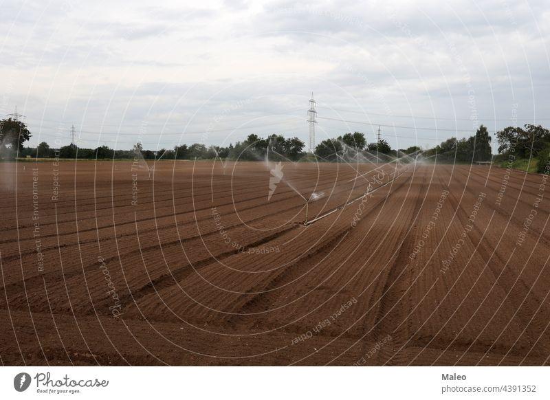 Bewässerung eines Gemüsefeldes - Rheinland Pfalz, Deutschland. Ackerbau Agronomie automatisiert Land Landschaft Ernte kultiviert Tropfen Umwelt Gerät Europa