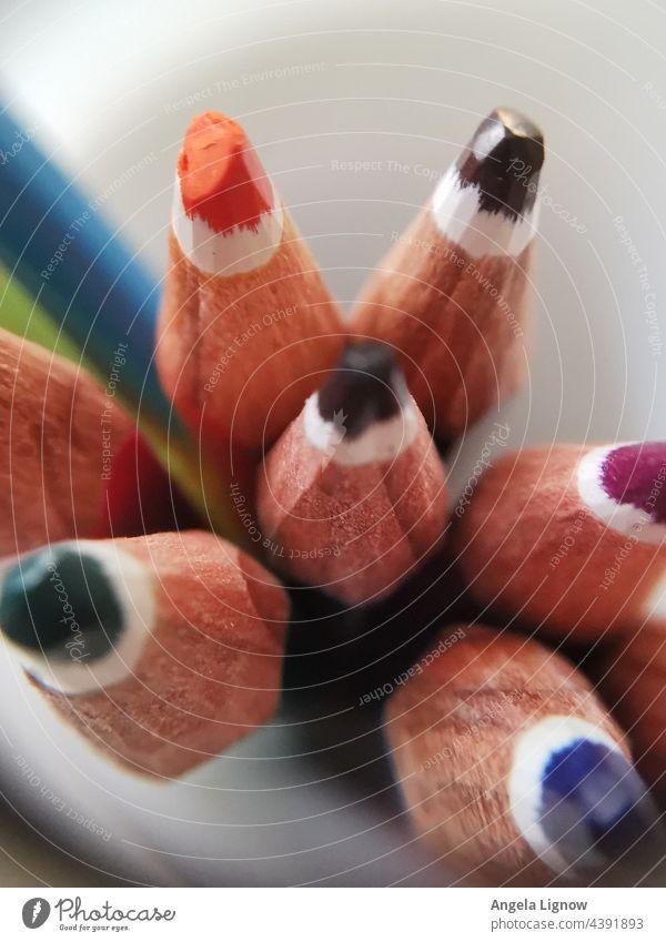 Buntstifte von oben gesehen Stifte Holz farbenfroh Farbe Stifte hintergrund Farben Farbenspiel holzstift Holzstifte Draufsicht
