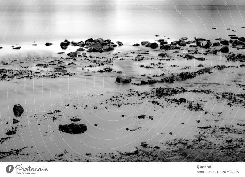 Elbe Flussufer mit Langzeitbelichtung Belichtungszeit Natur Wolken Landschaft Außenaufnahme Umwelt Wasser Strand Schwarzweißfoto Steine Meer Küste Fotografie