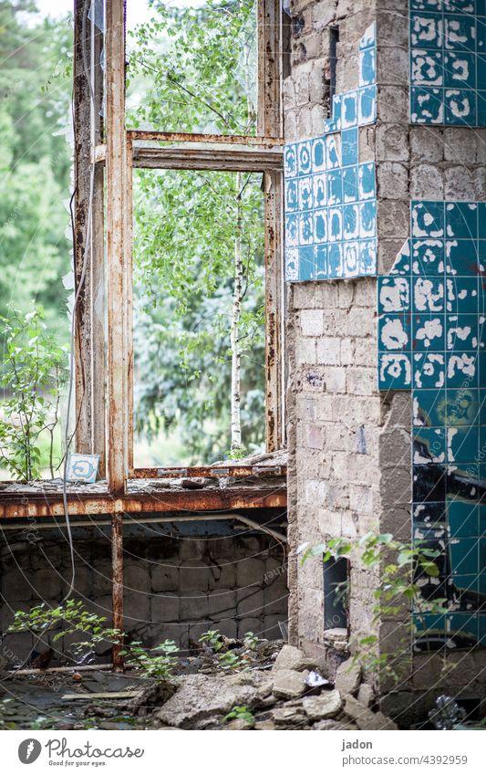 schöner wohnen (3). Ruine Architektur Haus Fenster alt Verfall kaputt Vergänglichkeit Zerstörung Bauwerk Vergangenheit Menschenleer Wandel & Veränderung