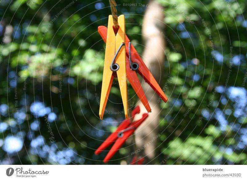 festgeklammert Klammer Wäscheklammern gelb rot mehrfarbig Hintergrundbild Baum Häusliches Leben Seil orange