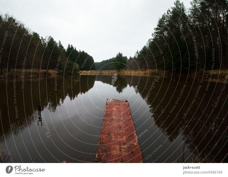 Steg am Karpfenteich umgeben von dunklen Wald Teich Natur Franken Idylle ruhig Landschaft Himmel Dämmerung Reflexion & Spiegelung Silhouette Weitwinkel