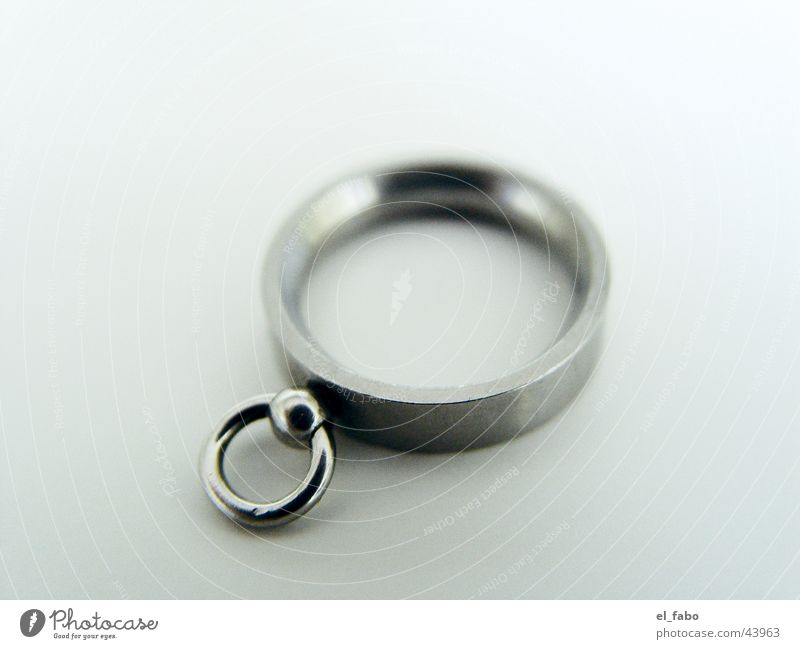 Ring Der O historisch ring der o bdsm bondage ...