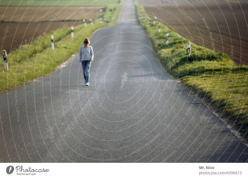 Ein langer Weg zurück Wege & Pfade Straße Mädchen Freiheit Ferne Umwelt Feld geradeaus Asphalt Spaziergang gehen zielstrebig Straßenrand unterwegs Landstraße