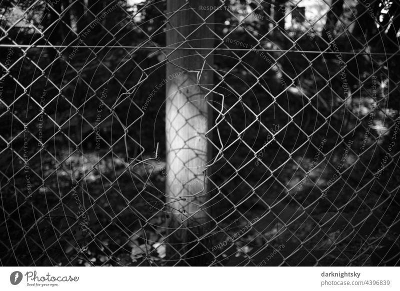 Zaun mit einer Beschädigung, die zur Flucht oder zum Einbruch genutzt werden kann und repariert werden muss Stacheldraht Wiese Schwarzweißfoto Stacheldrahtzaun
