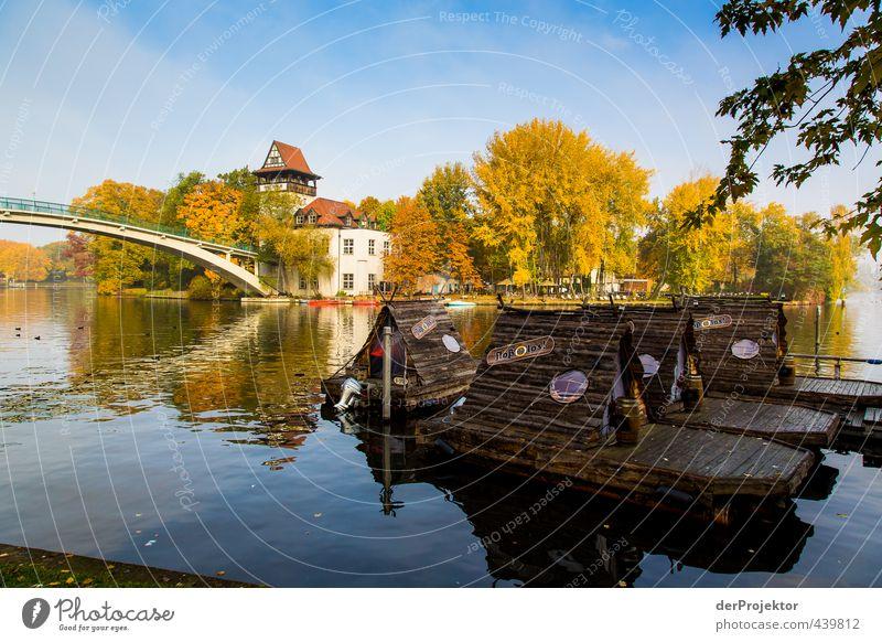 Herbst an der Insel der Jugend Wasser Baum Landschaft Freude Blatt Haus Umwelt Gefühle Herbst Berlin Glück Stimmung Park Zufriedenheit Schönes Wetter Brücke
