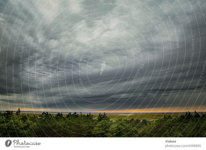 Was kommt da auf uns zu? St. Peter Ording Nordsee Wolken Wetter Baumwipfel Weite ungemütlich Unwetter