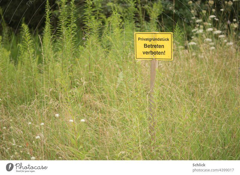 Schild Betreten verboten Privatgrundstück auf einer Wiese mit vielen Wildblumen Wildkräuter wild Gras hoch ohne Himmel gelb Text Schrift deutsch