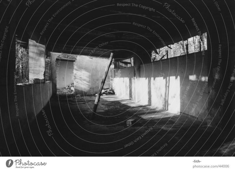 Abstellraum Baracke kaputt Strebe verfallen Architektur Schwarzweißfoto Baumstamm