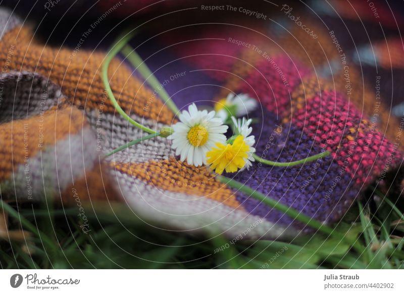 Gänseblümchen auf einer Decke mit Ethnomuster Wolldecke Picknick picknickdecke gewebt warme Farben Farbtöne lila ockerfarben beige braun Wiese Hippie