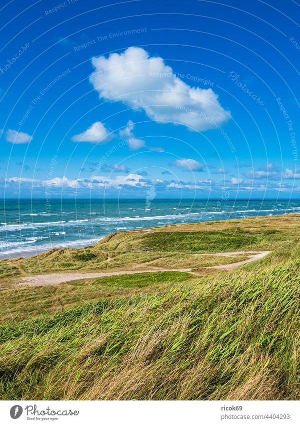 Düne und Strand bei Hirtshals in Dänemark Küste Nordsee Meer Skagerrak Sommer Dünengras Wasser Wellen Natur Jütland Hjørring Hjorring Landschaft Himmel Wolken