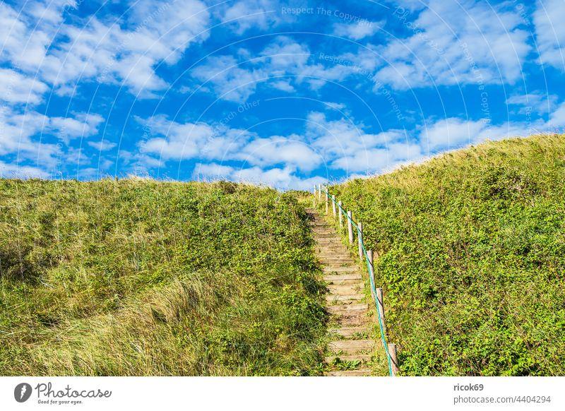 Treppenaufgang in den Dünen bei Hirtshals in Dänemark Küste Nordsee Skagerrak Sommer Dünengras Treppengeländer Natur Jütland Hjørring Hjorring Landschaft Himmel
