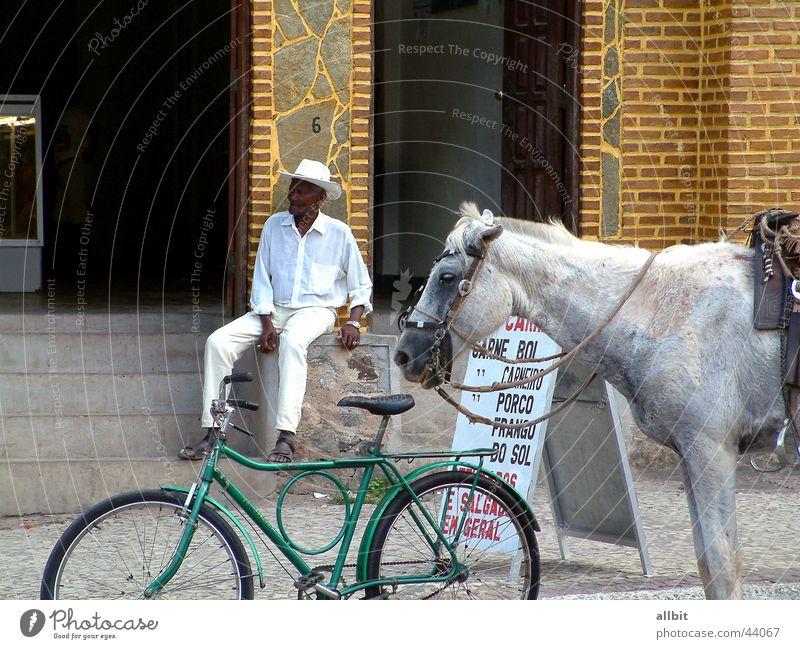 Vila Amoreiras Brasilien Pferd Fahrrad Mann Senior ruhig Gelassenheit Pause Erholung Südamerika Mensch Männlicher Senior Reitsport sitzen Treppe Straße