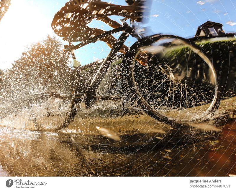 Radfahrer fährt durch eine Pfütze im Sommer Fahrrad Fahrradfahren Fahrradfahrer Radfahren Spiegelung spritzen wasser Sport Straße Verkehr Bewegung im Freien