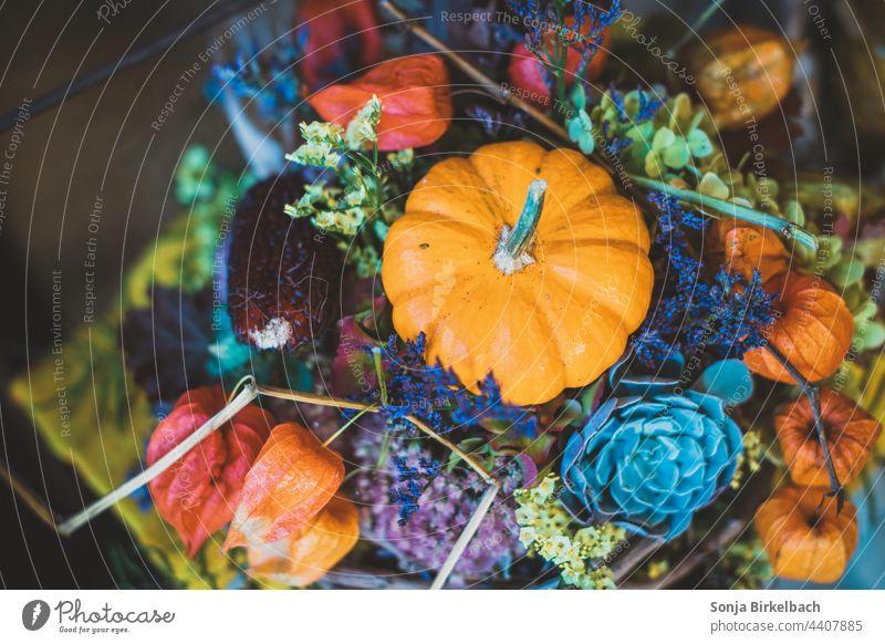 Langsam wird es herbstlich.... Bunte Dekoration mit Zierkürbis Herbst Halloween Kürbis Zuhause Jahreszeit bunt Dekoration & Verzierung orange Gemüse