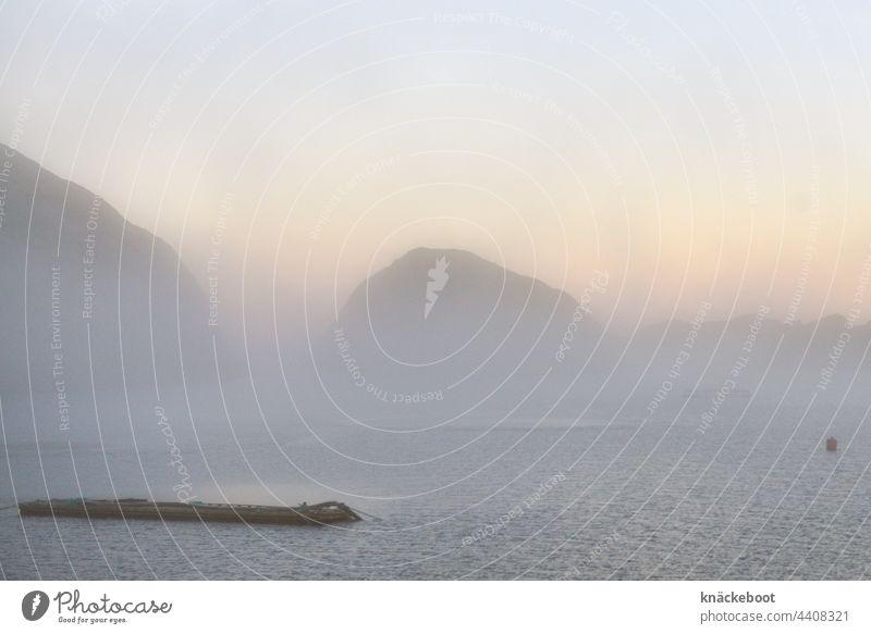 fjord im nebel um mitternacht Fjord Norwegen See Nusfjord Berge Berge u. Gebirge Wasser Landschaft Nebel Skandinavien Ferien & Urlaub & Reisen Außenaufnahme