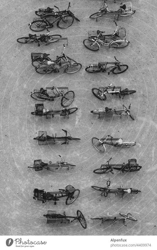 Ordnung im Chaos   Parkplatz Fahrräder Außenaufnahme Verkehrsmittel Fahrradständer viele parken Stadt Mobilität Rad Fahrradfahren Menschenleer umweltfreundlich