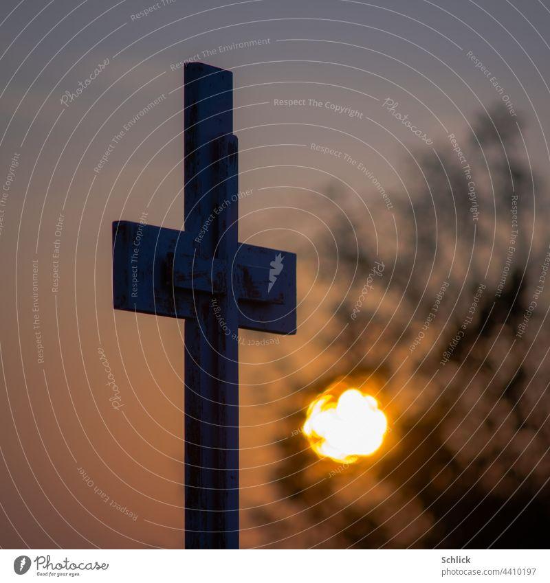 Ein neues Leben oder Sonnenaufgang unter einem Wegekreuz Strauch Gebüsch Kreuz Katholizismus morgen Dämmerung morgendämmerung Himmel Morgendämmerung