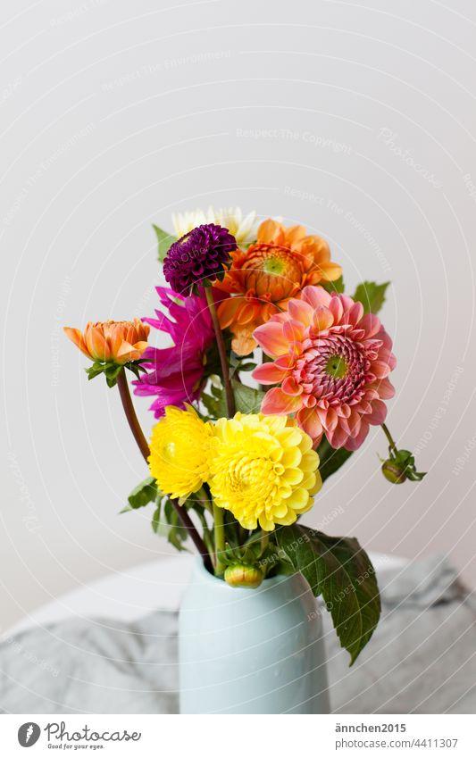 Ein bunter Strauss Dahlien auf einem Tisch Blume Blumenstrauß Herbst Sommer Vase Vase mit Blumen Blüte Dekoration & Verzierung Blühend Innenaufnahme grün