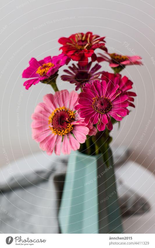 rosafarbene Blumen in einer türkisen Vase stehen auf einem Tischchen Sommer Herbst Blumenstrauß Natur Blüte grün tisch Dekoration & Verzierung Innenaufnahme