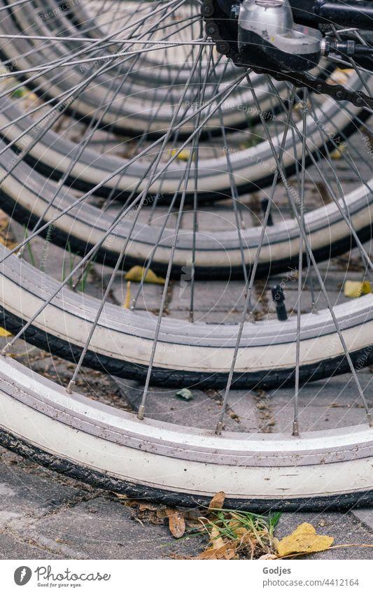 Fahrradreifen in einer Reihe Reifen Speichen Rad Detailaufnahme Verkehrsmittel Nahaufnahme Außenaufnahme Farbfoto Menschenleer Metall alt Felge