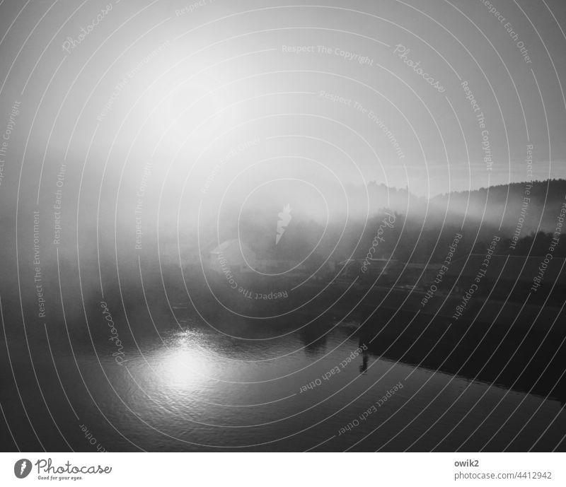 Verschleiert Nebel Panorama (Aussicht) Licht glänzend Ufer geheimnisvoll mystisch Natur Wasser Morgen Herbst Menschenleer Wasserspiegelung windstill schemenhaft