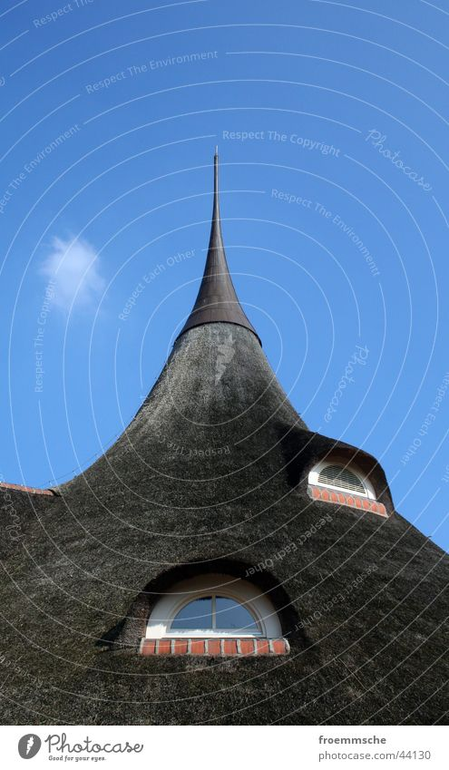 reetdach Himmel blau Fenster Architektur Dach Spitze Spitzdach Reetdach