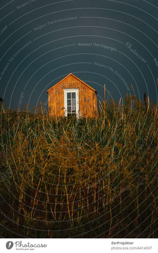 """Strandhaus auf der hyggeligen Insel Ærø in Dänemark XII relaxation erholen & entspannen"""" Freiheit Sommer Außenaufnahme Ostsee Tourismus Hintergrund neutral"""