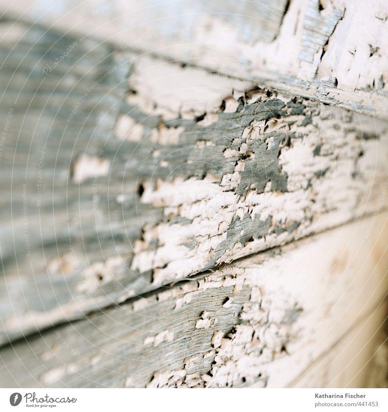 .. . verwittert alt weiß Sommer Umwelt Frühling grau Holz braun dreckig authentisch einfach trocken trashig Originalität Holzzaun