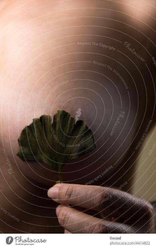 Blütenblatt auf der weiblichen Brust V Frau Porträt Menschen reif im Innenbereich Blume Natur Lifestyle menschlich attraktiv sexy Schönheit reife Schönheit