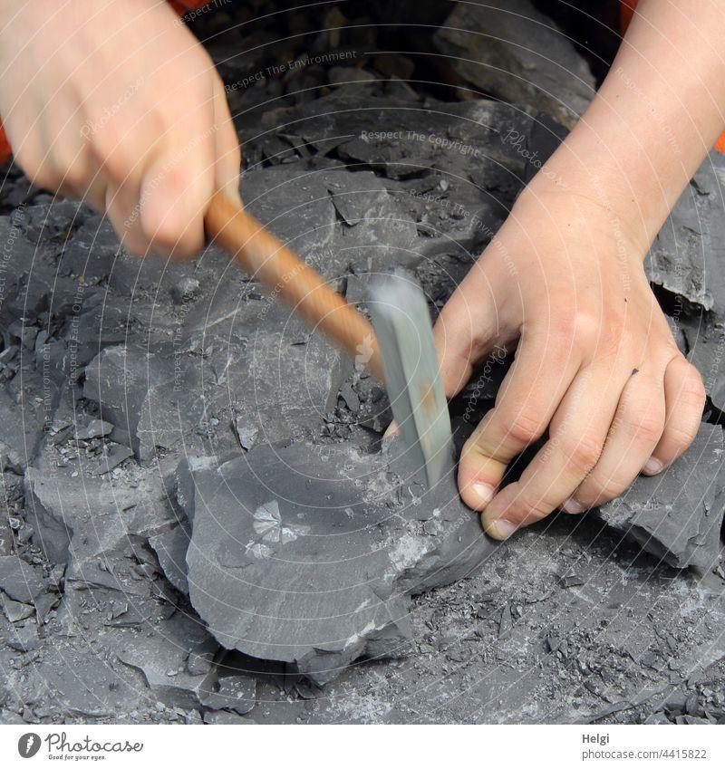 Fossiliensuche - Hände eines Kindes, die mit einem kleinen Hammer Tonschiefersteine zerklopfen Hand Kinderhand hämmern zerschlagen Finger Stein Abenteuer Freude
